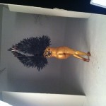 behind-the-scenes-of-egypt-selinda-recent-photo-shoot-HHS1987-2012-5