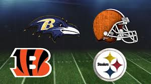 cover1 2012 AFC North Preview And Predictions