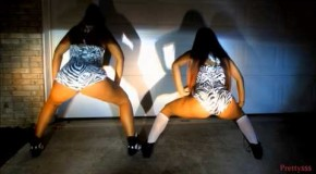 Twerk Team (@TwerkTeam) (@MizzTwerksum) (@TTLadyLuscious) – I Don't Like #AtlantaEdition (Video)