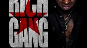 Birdman &#8211; Rich Gang: All Stars (Mixtape)