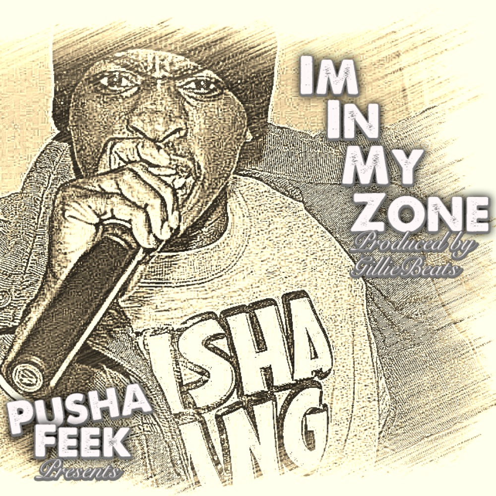 Pusha Feek - In My Zone