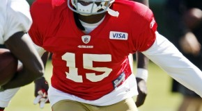 49ers Star Michael Crabtree Suffers Torn Achillies Tendon & Could Miss The 2013 NFL Season