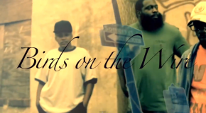 Dark Lo &#8211; Birds On The Wire (Video)