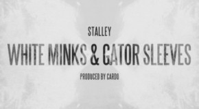 Stalley (@Stalley) – White Minks & Gator Sleeves (Prod. by @Cardogotwings)