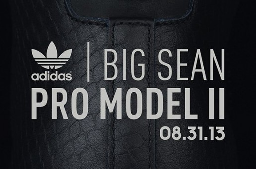 Big Sean Adidas Pro Model II (8-31-13) (Photos)