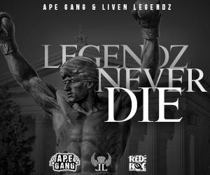 300-x-250-living-legendz