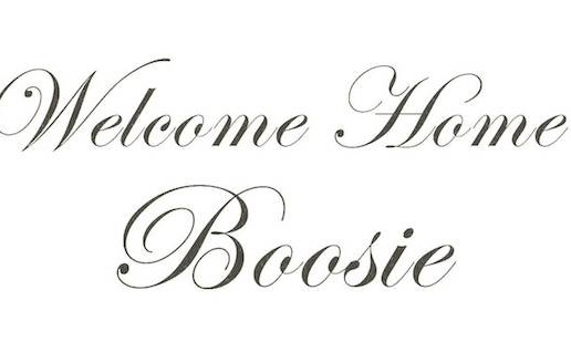 Plies – Welcome Home Boosie