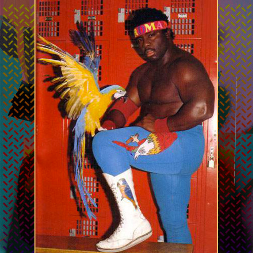 http://hiphopsince1987.com/wp-content/uploads/2014/03/shad-koko-b-ware.jpg