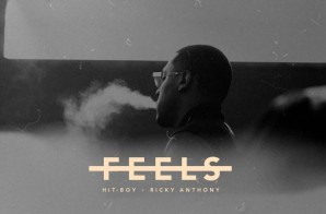 Hit-Boy – Feels Ft. Ricky Anthony