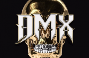 DMX x Swizz Beatz – Bane Iz Back